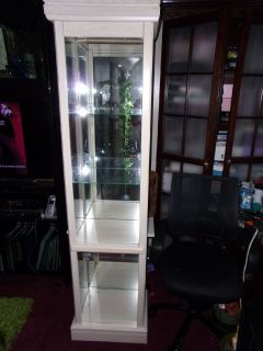 China CABINET / PLANT RACK / STAND Door Glass Shelves Lights & Mirror