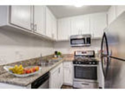 Yarmouth Apartments - 2 BR