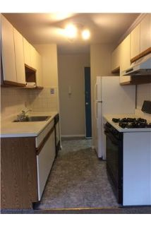 Quiet 1 bedroom $850