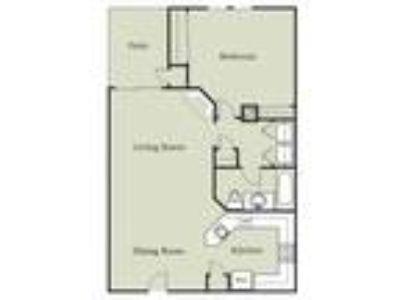 Palm Court Apartments - Aragon w/Carport