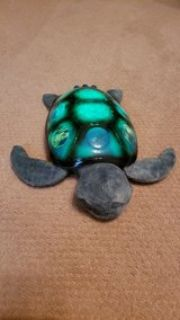 Sea turtle star projector/stuffed animal