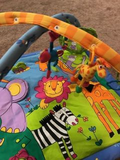 Bay's Multicolored Zoo Animal Themed Activity Gym