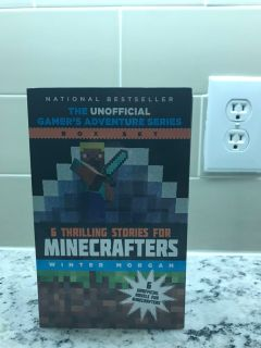 Minecraft Book Series