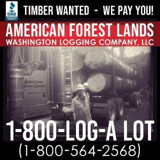 Logging Company Timber Harvesting Chehalis, Onalaska, Toledo, Winlock WA