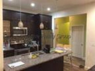 Boston - Allston, Newly Remodeled Four BR apartment with 2