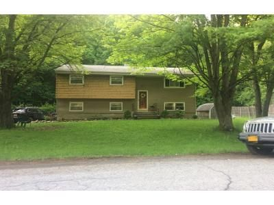 4 Bed 2 Bath Preforeclosure Property in Monroe, NY 10950 - Tanager Rd