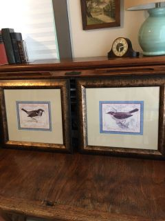 History of British Birds prints - Set of 2