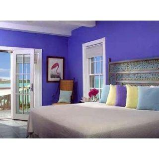 VS Enterprises-Residential Interior Painting Service