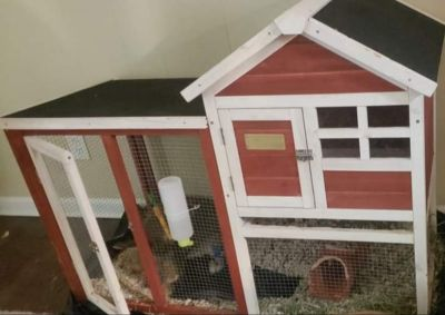 Rabbit House with Extras