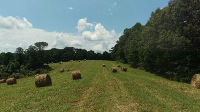 Hilltop land., 28+/_ acres