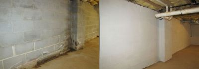Mold Treatments & Solutions Providing Services Near Me