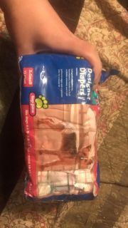 X-small dog diapers