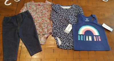 Carter's baby girl clothes 6 months