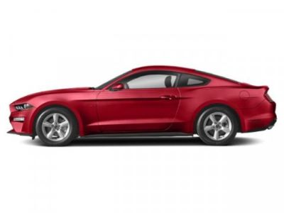 2019 Ford Mustang GT (Race Red)
