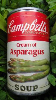 Campbells soup LABELS