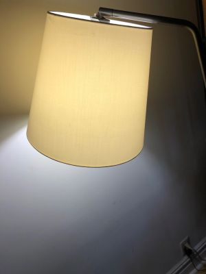Overarching Floor Lamp (Crate&Barrel)