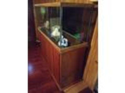 75 Gallon Aquarium with Cabinet