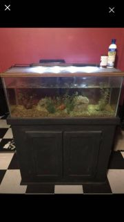 40 gallon tank with stand pump and light. Must pickup today for $50
