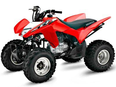 2018 Honda TRX250X Sport ATVs Erie, PA