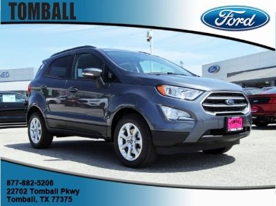 2019 Ford EcoSport SE (Smoke Metallic)