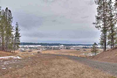 00 Mt Spokane Park Dr Mead, Gorgeous 10 acre lot of prime