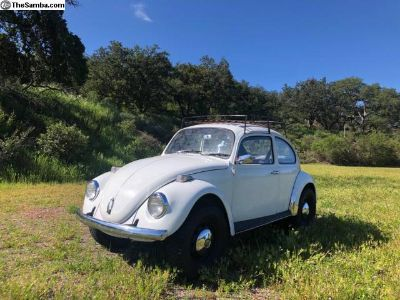 1970 Class 11 Look bug for sale or trade