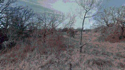 Frontier Shores, Bowie Texas – Lake Community Lot