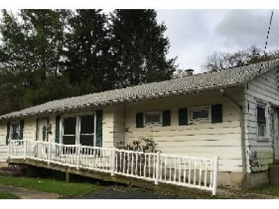 3 Bed 1.5 Bath Foreclosure Property in Greene, NY 13778 - State Highway 12