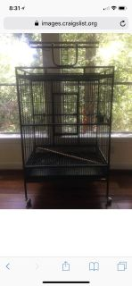 Looking to Buy-large bird cage