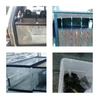 Aquariums, Stand and Supplies