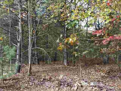 5 & 5A Off Coyote Drive Huntingdon, Great building lots with