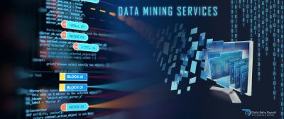 outsource data mining services