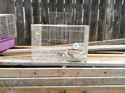 NiCE Wood Dinning Table,bird cages and ice chest (anson)