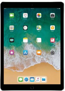 Iso ipad mini or any kind of iPad that works great,that is factory reset, that comes with case and charger under $100 thanks