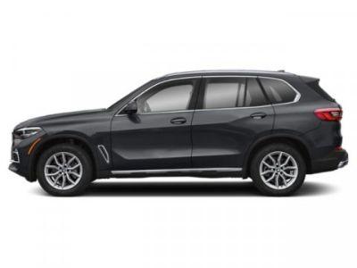 2019 BMW X5 xDrive40i (Arctic Gray Metallic)