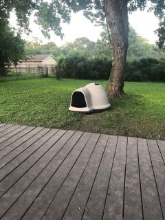 ndigo Dog house