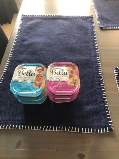 BELLA BY PURINA DOG FOOD