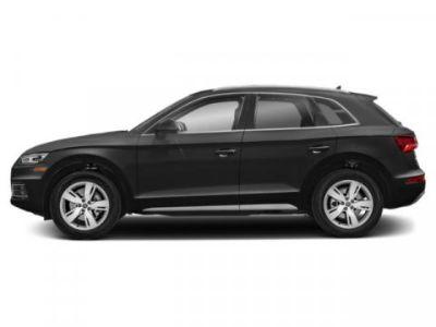 2019 Audi Q5 Premium Plus (Brilliant Black)