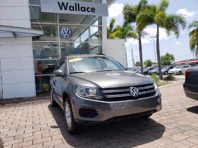 2015 Volkswagen Tiguan S (gray)