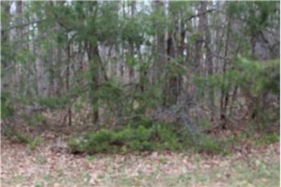 $49,900, 7210 Old Dickerson Drive - Ph. 540-226-6475