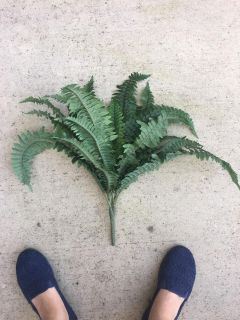 Artificial green plant 1 of 3