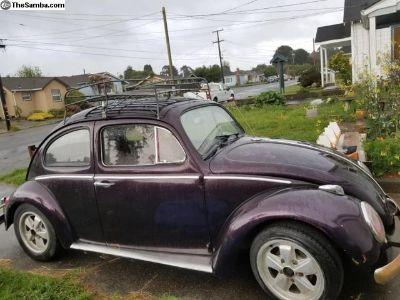 1963 Bug For Sale Soon