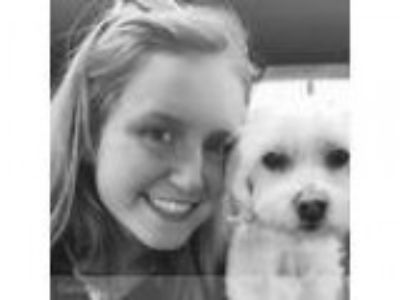 Caring house and pet sitter