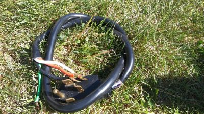 Dryer cord in good condition