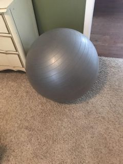 Golds gym exercise ball
