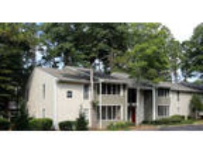 The Columns at Peachtree Corners - One BR One BA Deluxe