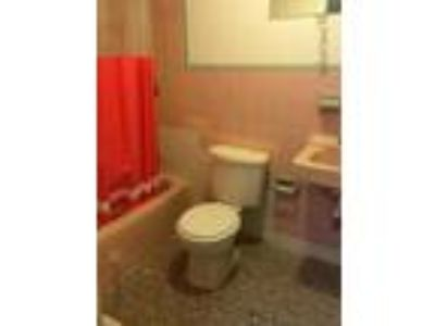 Boston - Kenmore Square, Sweet Kenmore/Fenway area Two BR 2
