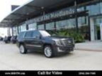 2017 Cadillac Escalade Platinum Edition 2017 Cadillac Escalade Platinum Edition