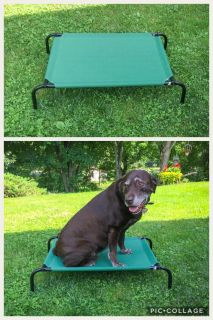 NEW Coolaroo Elevated Pet Bed, size medium (my lab pictured is 90lbs and it s too small for him) **READ FULL DESCRIPTION BELOW