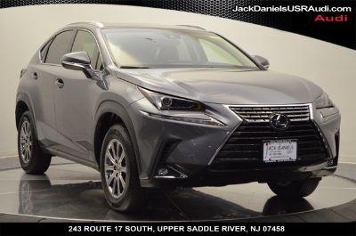 2019 Lexus NX (gray)